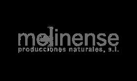 Molinense